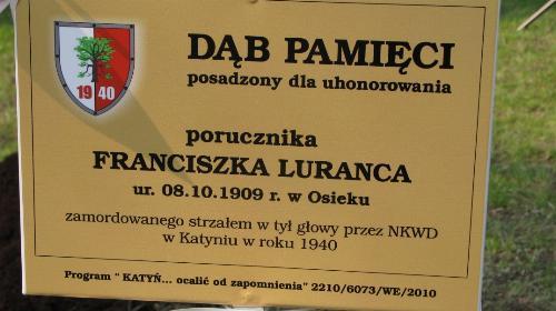 Obrazek galerii Dęby Katyńskie