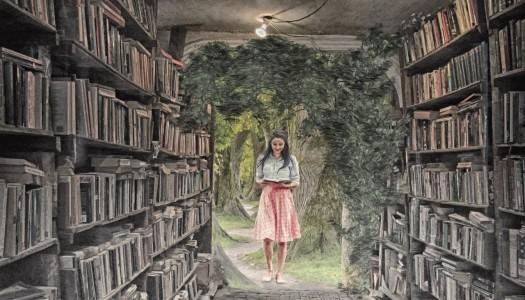 Obrazek newsa Zamawianie książek w bibliotece