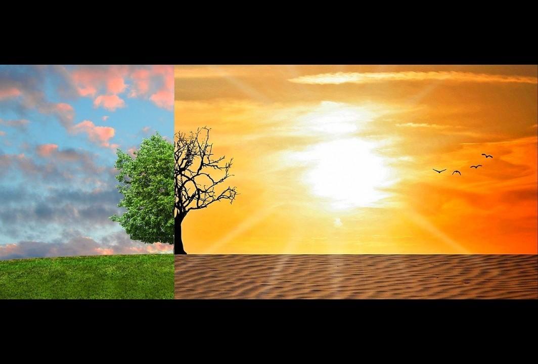 Obrazek newsa XXXV Olimpiada Wiedzy Ekologicznej